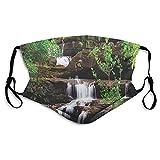 Little Waterfalls Flow on Rock Treppen umgeben von langen Pflanzen Erde Tuch Gesichtsmaske mit...