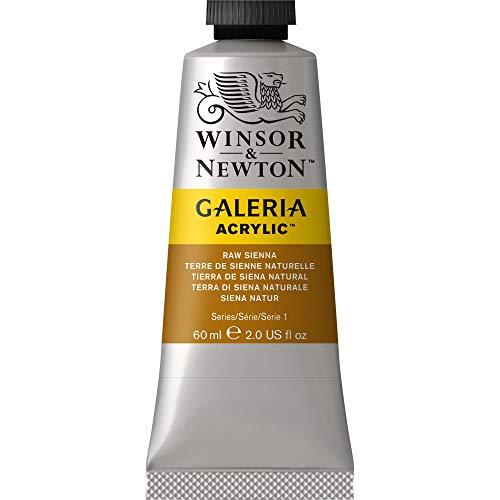 Winsor & Newton Galeria Acrilic - Colore Acrilico, 60 ml, Marrone (Terra Di Siena Naturale)