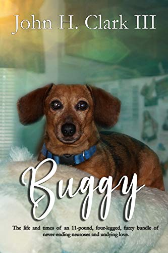 Buggy: The life and times of an 11-pound, four-legged, furry bundle of never-ending neuroses and undying love