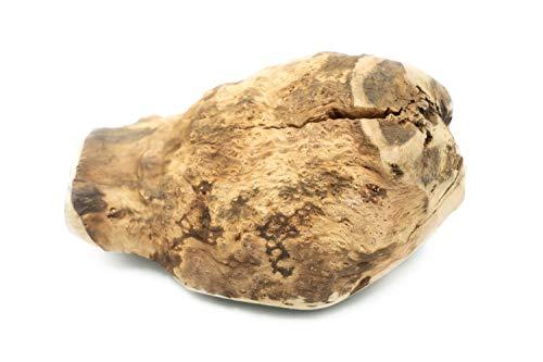 4Dogs Kauwurzel XL (von 500 bis 750 g) aus luftgetrockneten Wurzeln der italienischen Baumheide | Kauspielzeug für Hunde aus unbehandeltem Naturholz | 100% natürlich, 0 Kalorien | 1 Stück