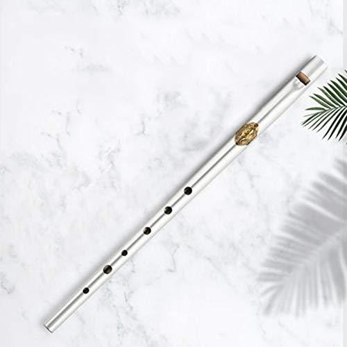 Irish Whistle Flute, C/D Ton Traditionelle Irish Whistle Tin Flute mit Etui, Die Tin Flute ist leicht und tragbar, Gutes Instrument für Anfänger und Profis