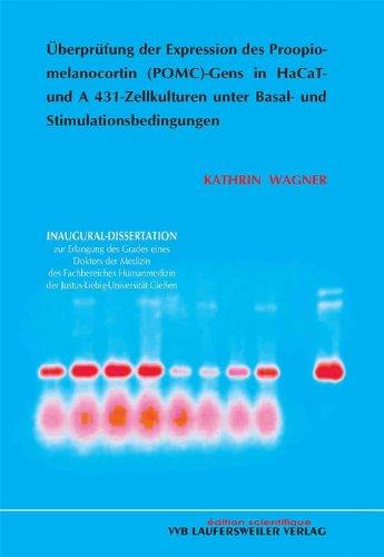 Überprüfung der Expression des Proopiomelanocortin (POMC)-Gens in HaCaT- und 431-Zellkulturen unter Basal- und Stimulationsbedingungen