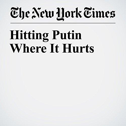 Hitting Putin Where It Hurts audiobook cover art