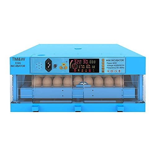 TM&W- Eggs Incubator, 64 Eggs Transparent Hatching Machine Automatic Intelligent Dual Power Chicken Duck Hatcher, Blue (64 Egg Incubator)