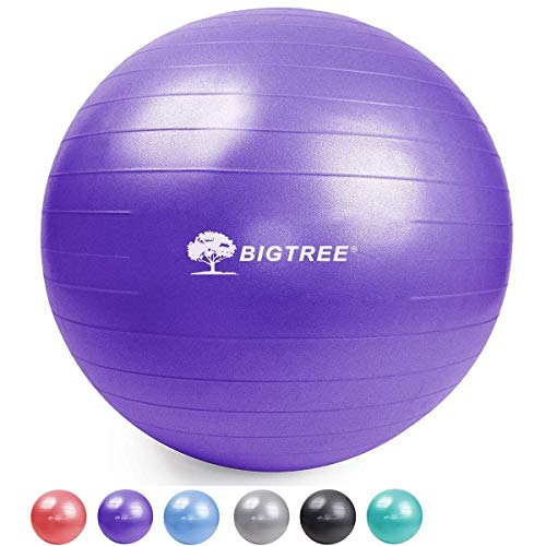BIG.TREE Professional Exercise Ball Pilates Box Flexible Seating Ball for Balance, Fitness, Stability (Purple, 55)