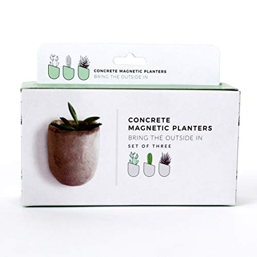 Gift Republic GR450067 Magnetic Planters, Grey, 5 x 16.5 x 13 cm