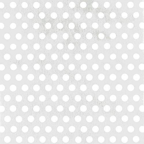 GAH-ALBERTS 466961 - Chapa perforada - agujero redondo, aluminio anodizado color plata, 200 X 1000 X 0.8 Mm
