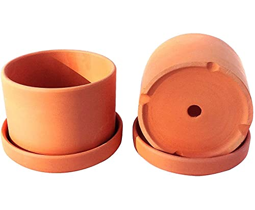 Natural Terracotta Round Fat Walled Garden Planters with Individual Trays. Set of 2