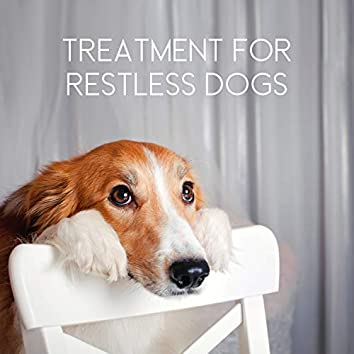 Calm Pet All Day – Treatment for Restless Dogs, New Age Relaxing Tones