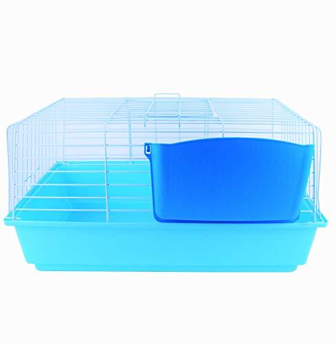 Pet\'s Solution Gabbia per Conigli Nano Piccoli roditori porcellino d\'india cavie portafieno colorato Doppia Apertura (Azzurra)