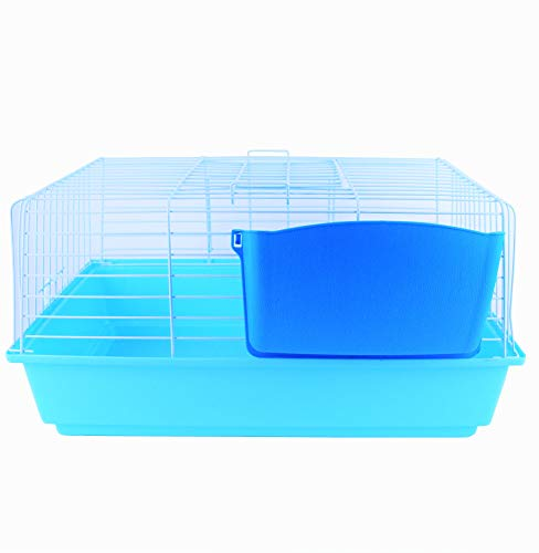 Pet's Solution Gabbia per Conigli Nano Piccoli roditori porcellino d'india cavie portafieno colorato Doppia Apertura (Azzurra)