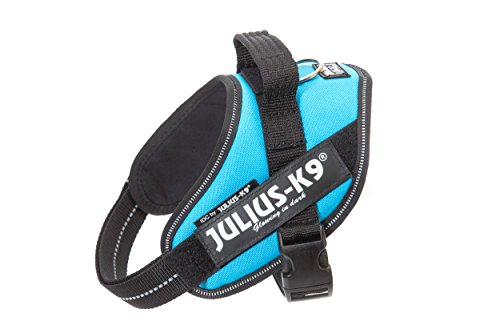 Julius-K9 IDC Powerharness for Dogs with Two Free Custom Patches, Aquamarine Mini