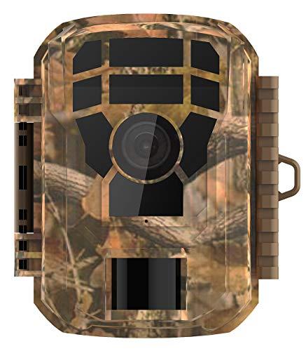 VisorTech Wildtierkamera: Full-HD-Wildkamera, PIR-Bewegungssensor, Nachtsicht, Farbdisplay, IP65 (Wildcamera)