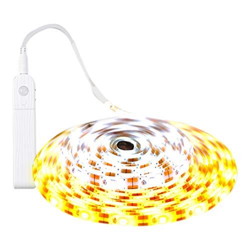 PowerBH LED-Licht mit Batteriekasten Induktion wasserdichte LED-Lichtleiste Induktionsbatteriekasten des menschlichen Körpers Schranklicht Treppenhaus Korridor Sensor Licht