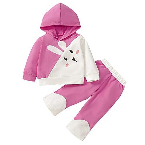 puseky Peuter Baby Meisjes Leuke Konijn Bunny Hoodie Trui Shirt+Broek Tracksuit Outfits Set