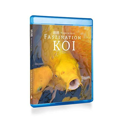 Nishikigoi   Faszination Koi - BluRay Teil 1   Koi Ratgeber Film