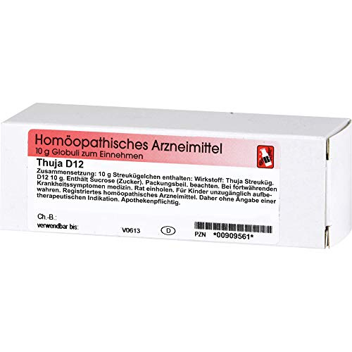 DR. RECKEWEG & CO Thuja D 12 Globuli, 10 g Globuli