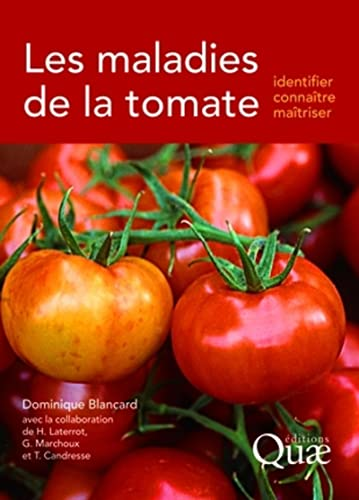 Maladies De La Tomate Identifier Connaitre Et Maitriser