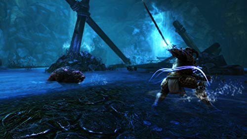 41chm+eTQUL - Kingdoms of Amalur Re-Reckoning - PlayStation 4 Standard Edition
