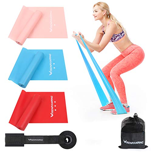 Resistance Bands Set, Exercise Bands with Door Anchor for Upper and Lower Body and Core Exercise, Physical Therapy, Lower Pilates, at-Home Workouts, and Rehab (Set of 3)