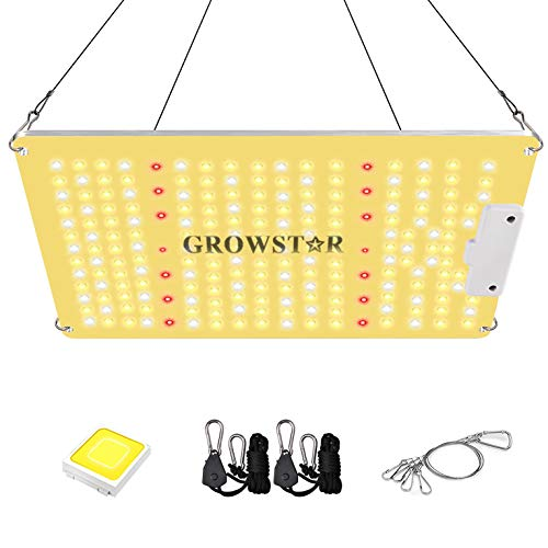 Growstar Newest 1000w Led Grow Light with Full Spectrum Wavelength, High ppfd and IR Grow Lamp for 2x2ft Indoor Hydroponic Greenhouse Seeding Veg and Bloom(Power Draw 110W)