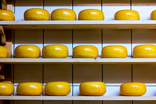 ITALIAN CHEESE - MARKET DEMAND – A REPORT (English Edition)