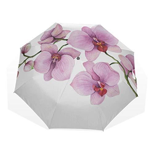 Ombrello Fresco Compatto Orchidea Ramo Primavera Fiore Ombrelli Pieghevoli Antivento Per Bambini Pioggia