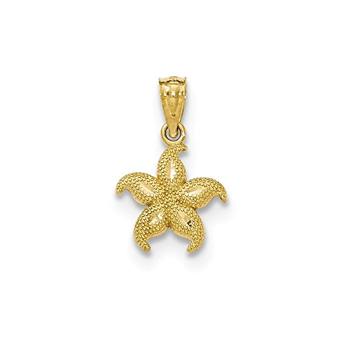 14k Yellow Gold Textured Starfish Pendant Charm Necklace Fish Sea Life Fine Jewelry For Women Gifts For Her
