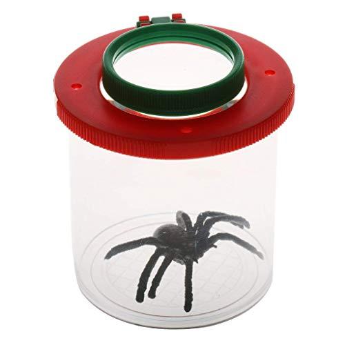Ndier Lupe mit Spinne Kinder beobachten Insekten Lupe Hinterhof Lupe Mikroskop mit gefälschten Spinne für Käfer Sämling