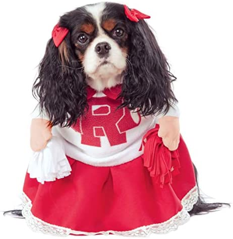 Dog cheerleading costume