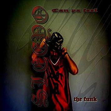 Can Ya Feel the Funk (single edit)