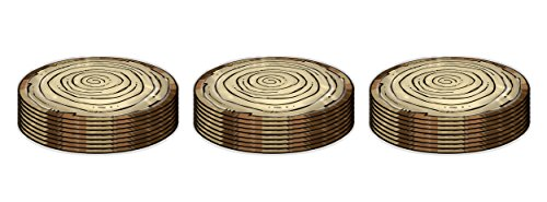 "Beistle 24 Piece Woodland Friends Plates, 9"", Multicolor"