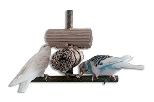 Knabberparadies für Vögel - Ausgiebige Beschäftigung wird durch diesen Vogelspielplatz garantiert