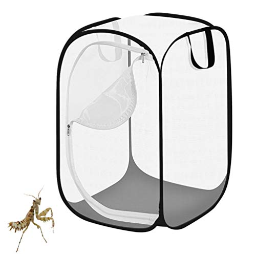 Cage D'insectes - Bug Portable Butterfly House Libellule Habitat, Nature Outdoor Exploration Jouets Boîtes D'insectes Pet Supplies