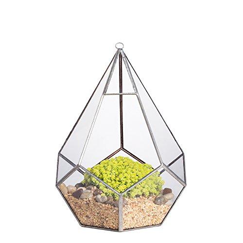 Moderner Pflanzenübertopf zum Aufhängen, trendiges Design, transparent, Tropfen-/Diamantform, Glas, geometrisches Terrarium