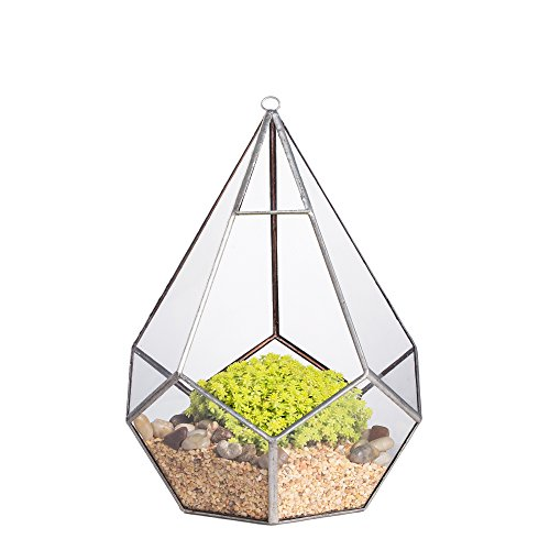 NCYP 8.6inches Silver Handmade Hanging Glass Geometric Terrarium Diamond Teardrops Shape Display Planter Succulent Air Plants Holder Indoor Decor Flower Pot Box Centerpiece (NO Plants)