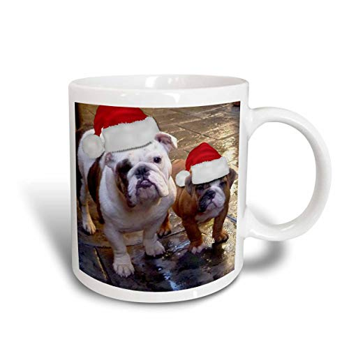N\A Mug_63087_2 Tazza in Ceramica Natalizia con Bulldog Inglese con Cappelli di Babbo Natale