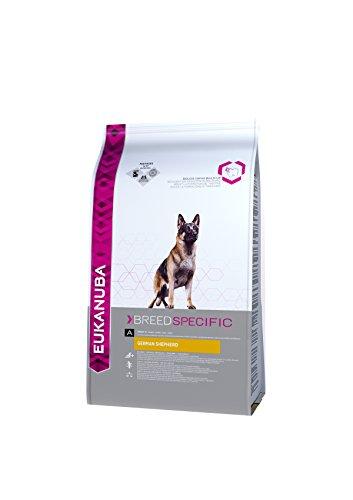 Eukanuba Croquettes Premium pour Chiens Berger Allemand, Berger Belge - Recommandé par les vétérinaires - 100% Complètes et Equilibrées – Enrichies en L-Carnitine - Au Poulet - 2,5 kg