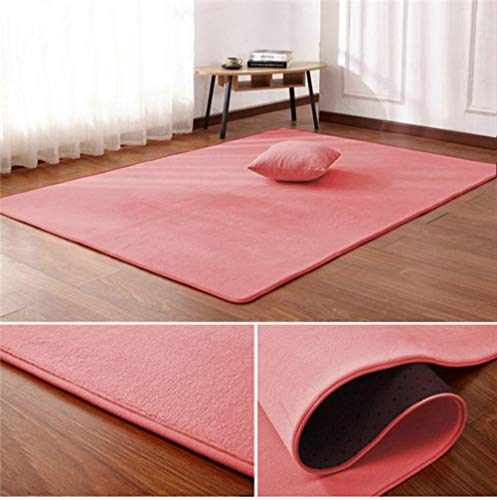 Nordic coral fluwelen tapijt woonkamer vloermat slaapkamer antislip deken woonkamer tapijt slaapkamer nachtkastje rechthoekige vloer pad, 2.200 cm x 300 cm