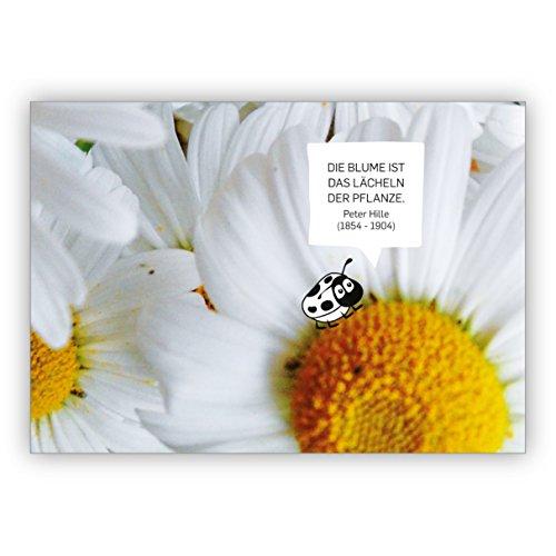 Set van 5 mooie vriendschapskaarten met margrieten: de bloem is de glimlach van de plant. Peter Hille (1854-1904)