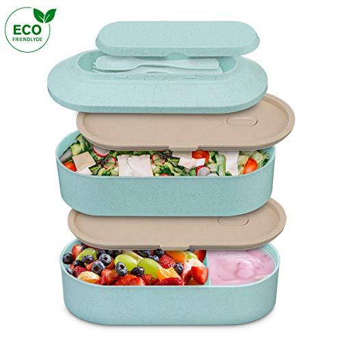 Comfook Boîte Bento, Lunch Box Hermétique avec 2 Couverts Solides Bento Box Japonais Écologiques Adultes Enfants pour Travail l'école Voyages (Vert)