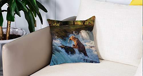 Luoquan Kissenbezüge Super Weich Home Dekoration,Wasserfall, Bild des großen Bären von einem Felsen in Alaska Wasserfall Wildl,Kopfkissenbezug Pillowcase Kissen für Wohnzimmer Sofa Bed,45x45cm