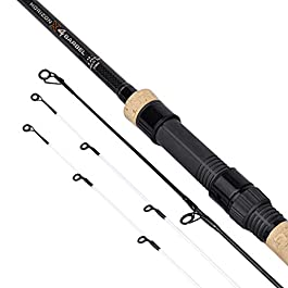 FOX Horizon X4 Barbel Multi Tip Canne Spécialiste, Longueur : 12 ft, Courbe de test : 2,25 lb