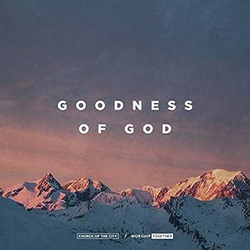 Goodness Of God (Live)