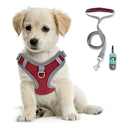 KITTYWOO Dog Vest Harness Leash Set No Pull Dog Vest Harness Puppy Padded Mesh Vest with Leash Easy Put On & Take Off Vest Harness for Small to Large Breed Pets (Red, S)