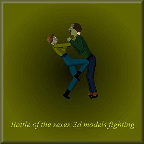 Battle of The Sexes:3D fighting