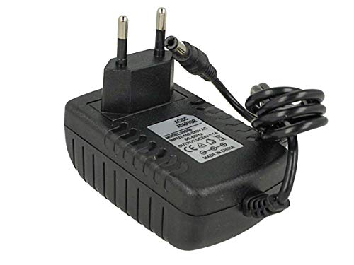 Ledlux CV7243 - Transformador de 24V 1A 24W con enchufe para casa, de 220 V a 24 V CC, color negro