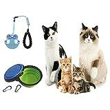 22 Piezas Kits de iniciación para Cachorros para Perros y Gatos pequeños, Incluye: Juguetes / Herramienta de Aseo / Kit de Limpieza / Correas Accesorios / Suministros de alimentación