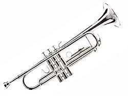 Hawk Trumpet Review – WD-T313- Are The Hawk Trumpets Good