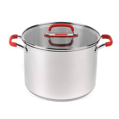 Pyrex P500734 Passion Stockpot with Lid, 24 cm, 7.8 L, Stainless Steel, 7.8 liters, Red